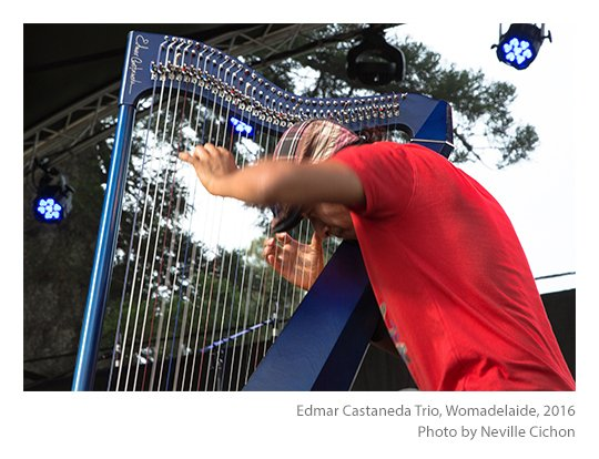 Edmar-Castaneda-Trio-Womadelaide-photo-Neville-Cichon-02