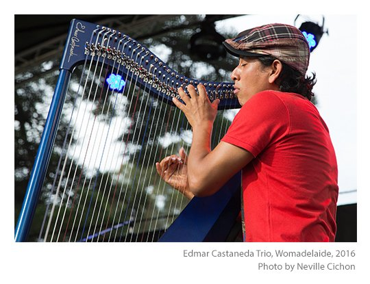 Edmar-Castaneda-Trio-Womadelaide-photo-Neville-Cichon-03