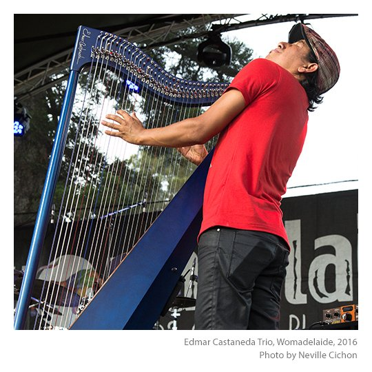 Edmar-Castaneda-Trio-Womadelaide-photo-Neville-Cichon-06